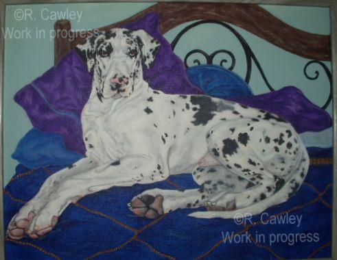 Acrylic Paintings by Rachel Cawley